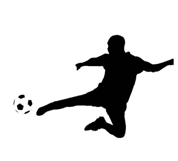 Association Sportive Du College College Faubert